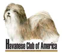 Havanese Club of America