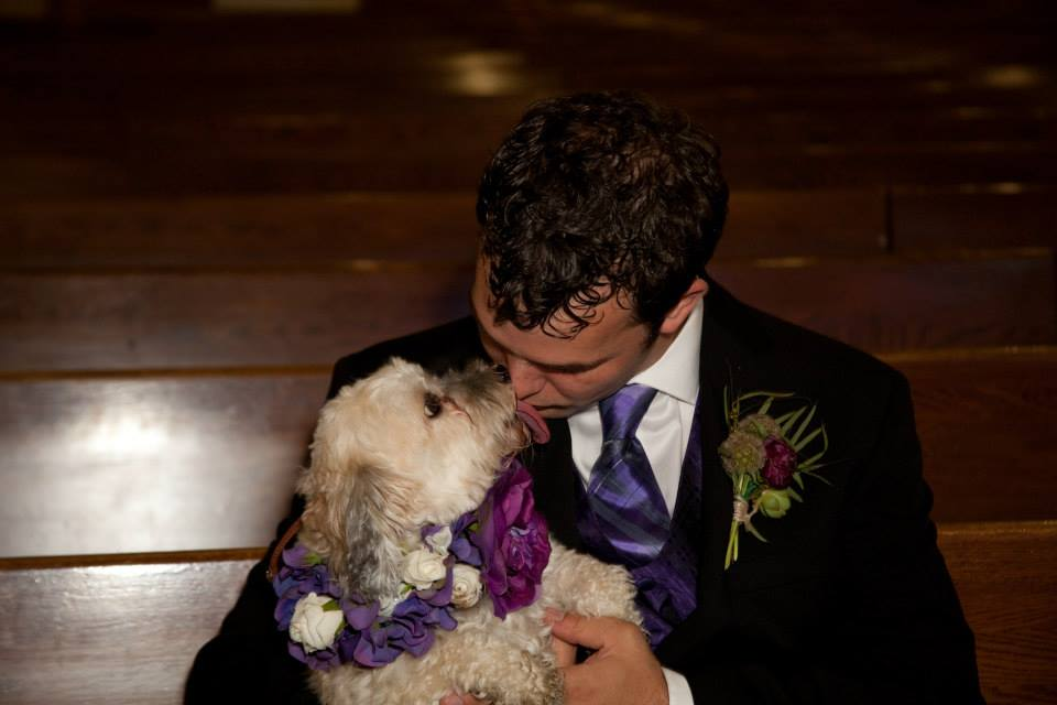 Happy Paws Havanese Savannah was a part of our wedding